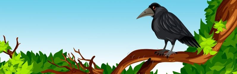 Fábula de animales La corneja con plumas ajenas de Juan Ruíz Alarcón