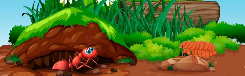 Fábulas largas La hormiga y la pulga