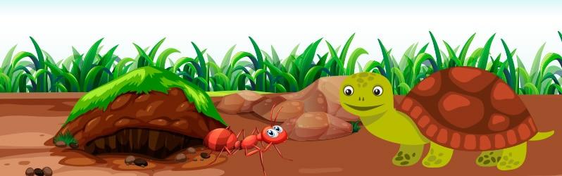 Fábulas mexicanas La tortuga y la hormiga