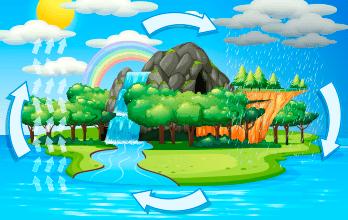Ciclo del agua Mini