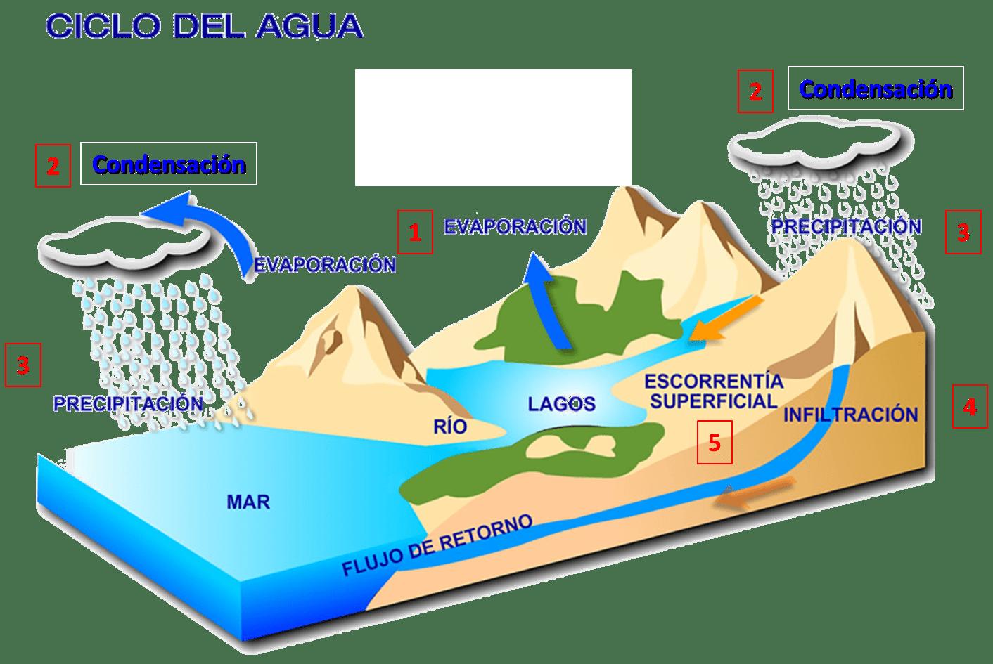 Ciclo Del Agua También Conocido Como Ciclo Hidrológico