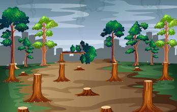 Deforestación Mini