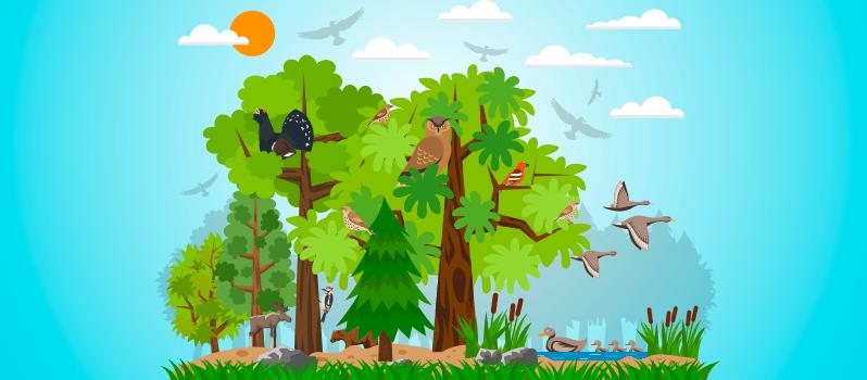Ejemplos de ecosistemas para niños
