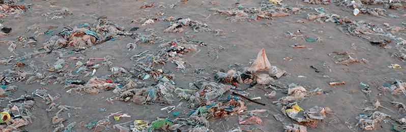 Entender qué es la contaminación