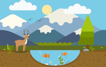 Los Ecosistemas Mini