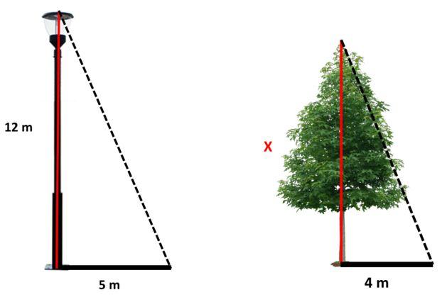 Mileto Thales teorema para niños