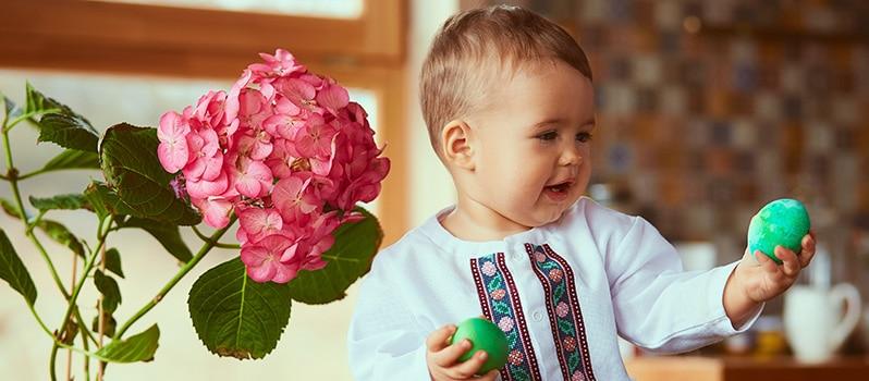 Nombres De Flores De Niños Y Su Significado