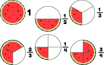 Fracciones Mini