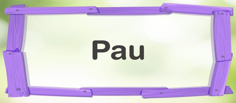 Significado de Pau